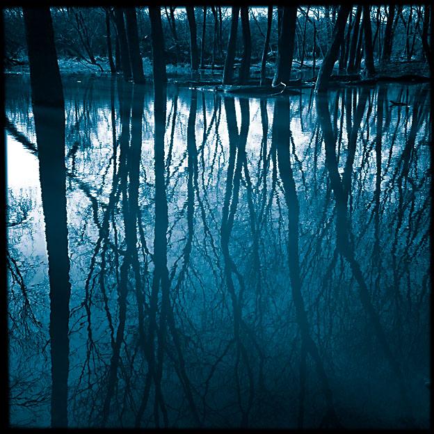 flooded_riverbank_3